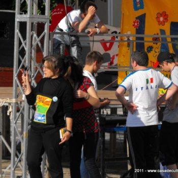 Voluntariat in folosul societatii
