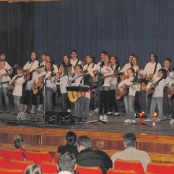 Concert Folk la Codlea