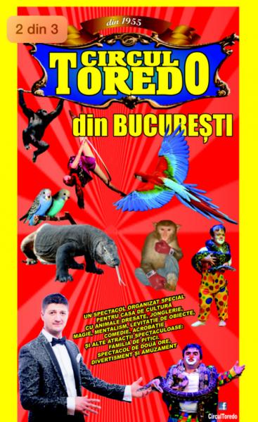 Spectacol pentru copii cu Circul Toredo la Casa de Cultura Codlea